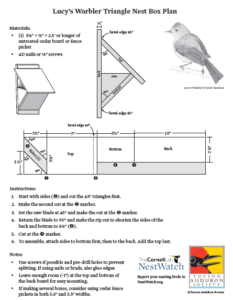 Click here for Lucy's Warbler nestbox plan